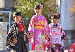 7-5-3 Japanese Children's fes