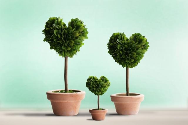 ハートの形をした木の鉢植えの写真