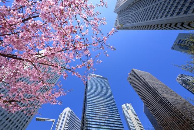 都会に聳え立つビルと桜