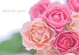 ピンクのバラとThank you