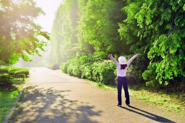 早朝散歩で伸びをする画像